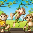Three monkeys at the wooden bridge — Stock Vector