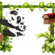 A mother panda together with her baby - Stock Vector
