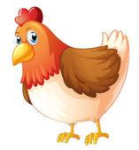 A mother hen — Stock Vector