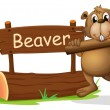 A beaver beside the wooden signboard — Stock Vector