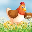 A hen laying eggs — Vector de stock