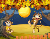 Two monkeys wondering in the middle of the night — Stock Vector