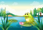 Nehirde bir kurbağa — Stok Vektör