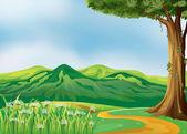 Een traject op de heuvels — Stockvector