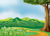 Un camino en las colinas — Vector de stock