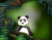 A panda at the jungle — Stock Vector