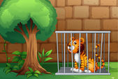 A cage with a tiger — Stock Vector