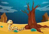 A snake at the desert — Stock Vector