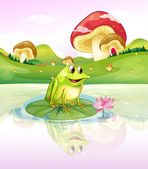 A frog above a waterlily — Stock Vector