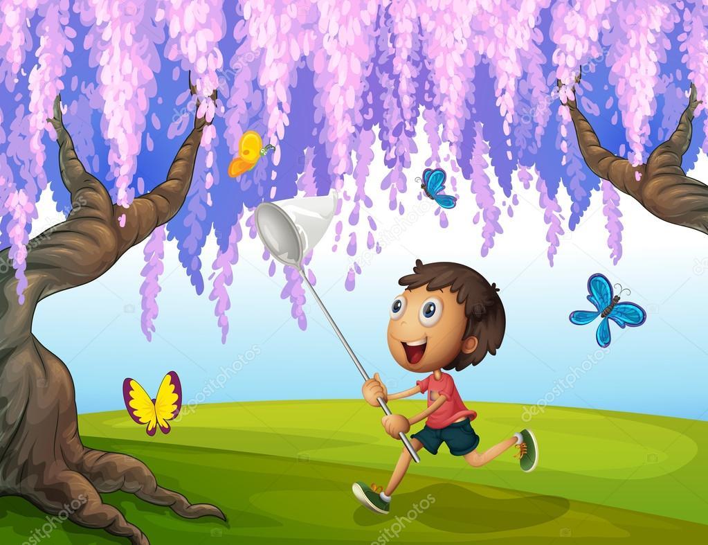 картинки для детей мальчик ловит бабочек