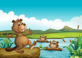 Beavers playing in the river with woods — Stock Vector