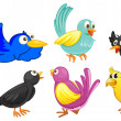 Stock Vector: Birds with different colors