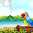 A colorful parrot at the beach — Stock Vector #21164389