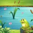 Frog at riverbank — Stock Vector #21243479