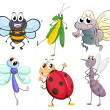 Different insects — Stock Vector #21243879