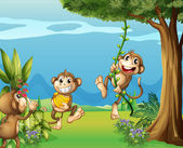 The three monkeys at the hills — Stock Vector