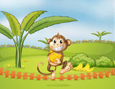 A monkey running away with bananas — Stock Vector
