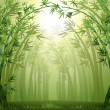Bamboo trees inside the forest - Stock Vector