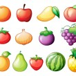 Different kinds of fruits - Stock Vector