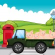 A green vehicle with pigs at the back - Stock Vector