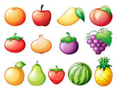 Different kinds of fruits — Stock Vector