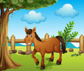 A horse under the tree — Stock Vector