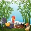A rooster and a hen at the rainforest — Stock Vector