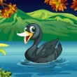 Stock Vector: A black swan at the lake