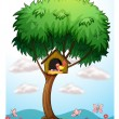 A bird in a tree with a bird house - Image vectorielle