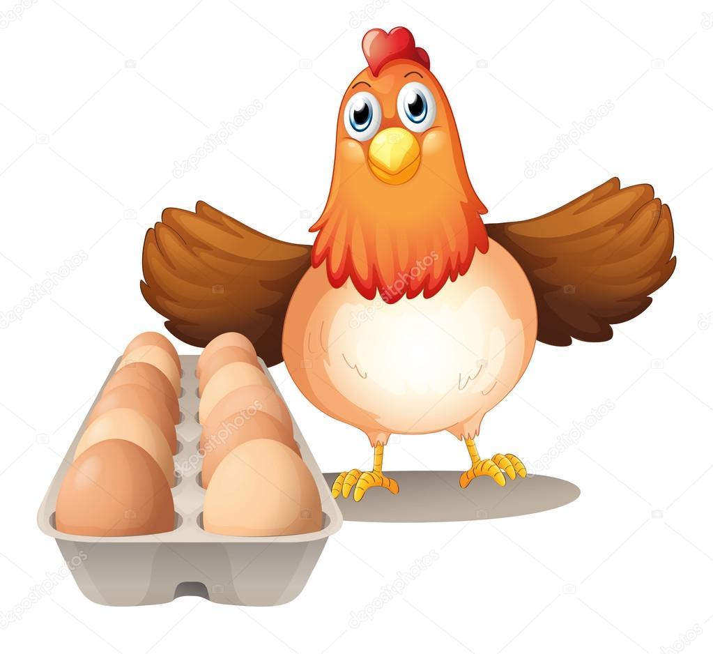Una gallina con huevos en la bandeja vector stock for Bandejas para huevos
