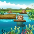 Three beavers in the river — Stock Vector #21610355