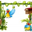 Two parrots with a wooden mailbox — Stock Vector