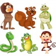 Royalty-Free Stock Imagen vectorial: Six different kinds of animals in the jungle