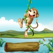Stock Vector: Monkey swinging
