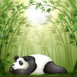A panda sleeping between the bamboo trees — Stock Vector