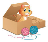 A cat inside the box — Stock Vector