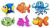 Five different kinds of sea creatures — Stock Vector