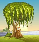A bear under a big tree — Stock Vector