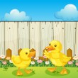 Two baby ducks inside the fence — Stock Vector