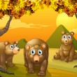 Three brown bears — Stock Vector