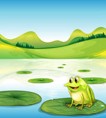 A frog above the water lilly — Stock Vector