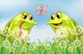 The two frogs and the butterfly — Stock Vector