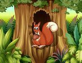 Uno scoiattolo in una cavità tenendo un dado — Vettoriale Stock