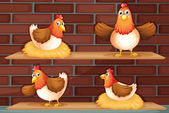 Four different positions of a chicken — Stock Vector