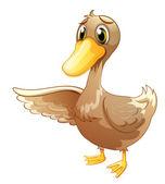 A brown duck — Stock Vector