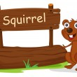 A squirrel beside a wooden signage - Stock Vector