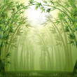 A green bamboo forest - Stock Vector