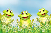 Three happy frogs in the garden — Stock Vector