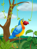 A colorful parrot at the branch of a tree — Stock Vector