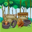 Stock Vector: orangutans at the zoo